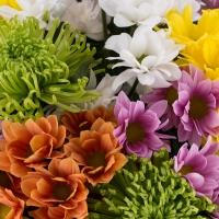 Buchet de 13, Crizanteme, Multicolore, Verdeață 3