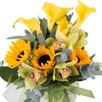 Buchet de 5, Cale, Galbene, Cală, 3, Floarea soarelui, 1 Cymbidium, Verde, Orhidee, Verdeață 2