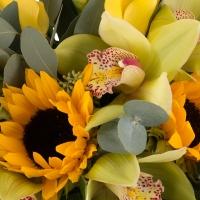 Buchet de 5, Cale, Galbene, Cală, 3, Floarea soarelui, 1 Cymbidium, Verde, Orhidee, Verdeață 3