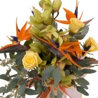 Buchet de 5, Strelitzia, Streliția, 1, Cymbidium, Verde, Orhidee, Verzi, 3, Trandafiri, Galbeni 2
