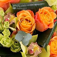 Buchet de Trandafiri, Portocalii, Portocaliu, Lisianthus, Verde, Cymbidium, Orhidee, Aspidistra 4