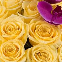Buchet din 25, Trandafiri, Galbeni, Phalaenopsis, Mov 3