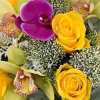 Buchet din Trandafiri, Galbeni, Trahelium, Veronica, Mov, Cymbidium, Orhidee, Phalaenospsis, Verde 3