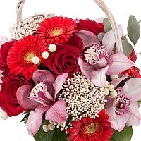 Buchet din Trandafiri, Roșii, Gerbera, Floare de orez, Hypericum, Cymbidium, Orhidee, Verdeață, Coș 3