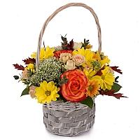 Cos cu trandafiri, miniroze, trahelium si crizanteme,  2