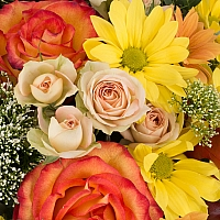 Cos cu trandafiri, miniroze, trahelium si crizanteme,  4