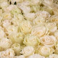 Cutie cu trandafiri albi 3