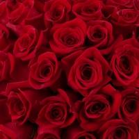Cutie cu trandafiri roșii 4