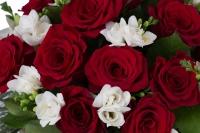 Duet de neuitat: buchet trandafiri rosii si frezii albe. 4
