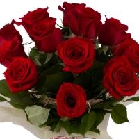 Ofertă, Dragobete 15 Trandafiri Roșii 4