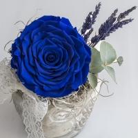 Trandafir albastru antic 3