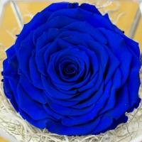 Trandafir criogenat octogon 3