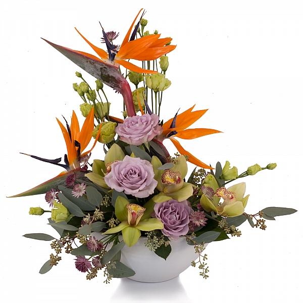 Aranjament din Strelitzia, Streliția, Trandafiri, Lisianthus, Astrantia, Cymbidium, Orhidee, Vas