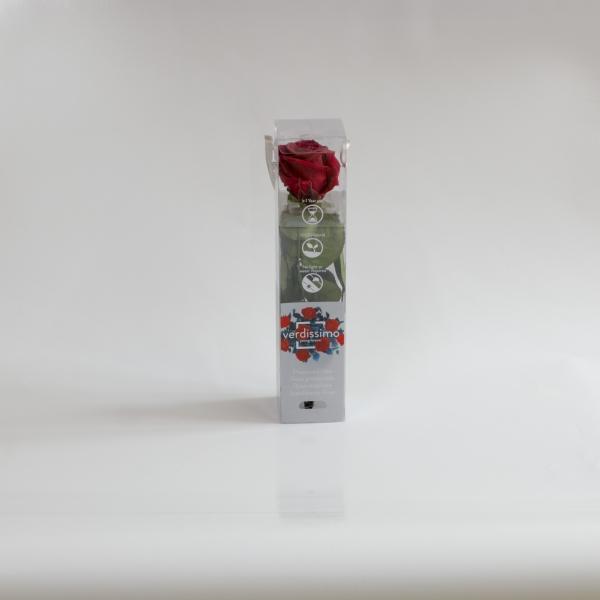 Cutie trandafir