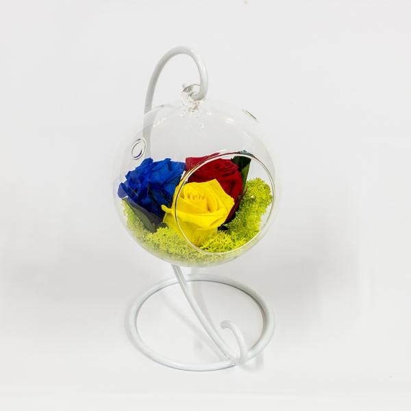 Tricoloratul