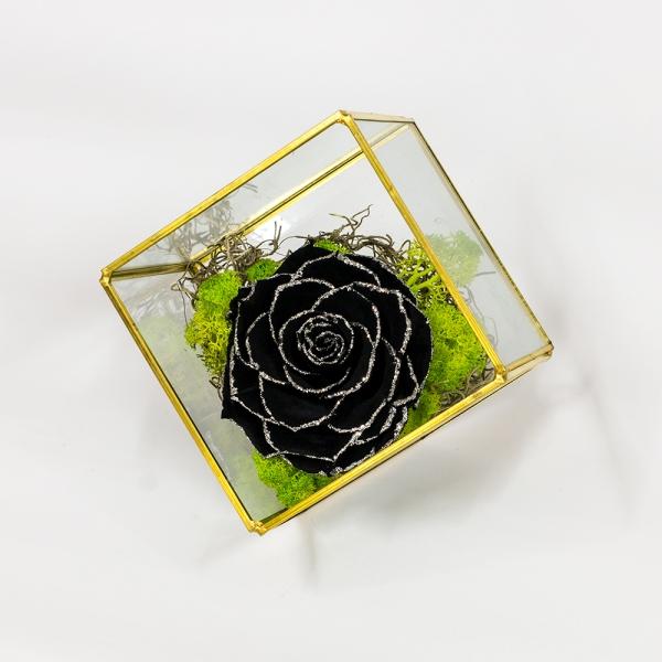 Trandafir-negru-criogenat