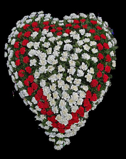 Coroana funerara din garoafe in forma de inima