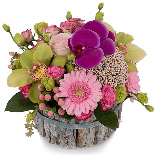 Aranjament din Gerbera, Cymbidium, Orhidee, Floare de orez, Lisianthus, Minirosa, Ciclam, Hypericum