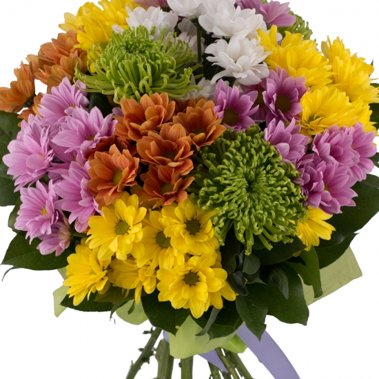 Buchet de 13, Crizanteme, Multicolore, Verdeață