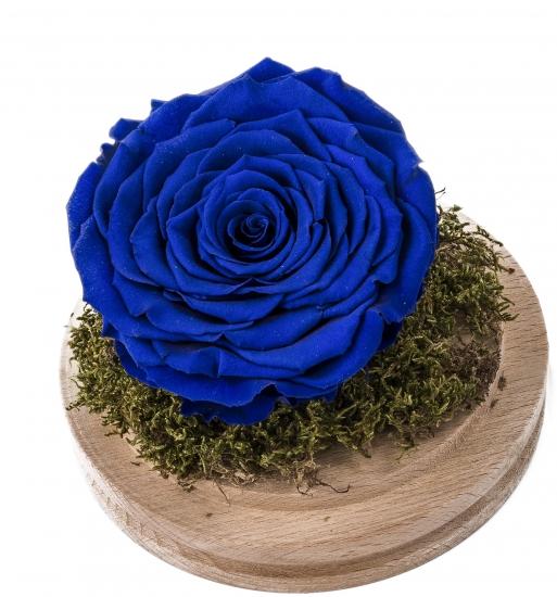 Cupola Sticla Trandafir Criogenat Albastru