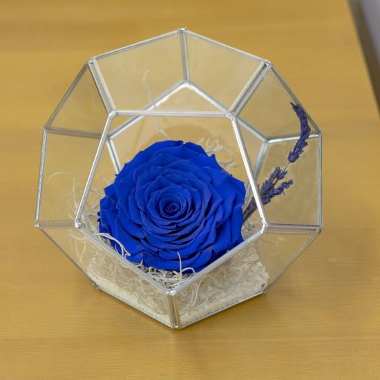 Trandafir criogenat octogon