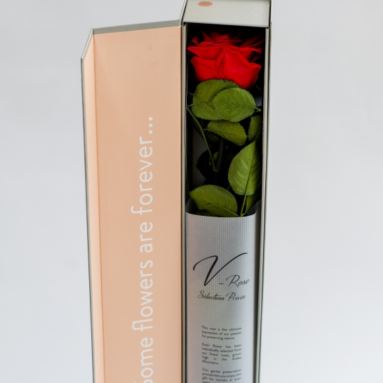 Trandafir rosu elegant